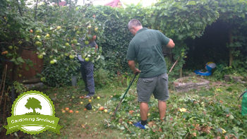 Experienced Gardeners in Manchester
